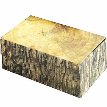 KIKKERLAND 不是樹幹收納盒(L)