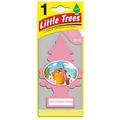 《美國 Little Trees》小樹香片- 櫻花蜂蜜 Cherry Blossom Honey