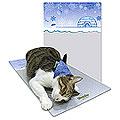 Fancy Pets 寵物鋁板涼墊 (冰屋 L 34X58cm)