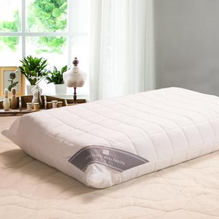 皮爾帕門 防潑水天然乳膠枕2入
