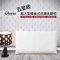 【葛蘿莉雅 Gloria】五星級 超大型蜂巢式抗菌乳膠枕(一入)