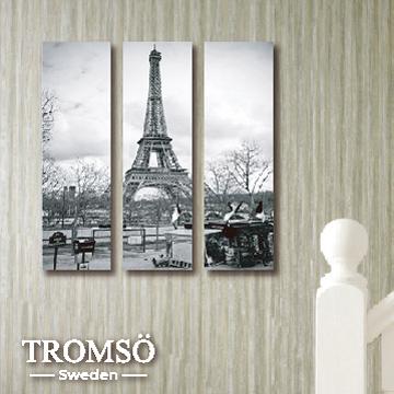 TROMSO時尚無框畫/巴黎風情迷你款
