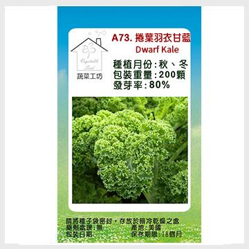【蔬菜工坊】A73.捲葉羽衣甘藍種子