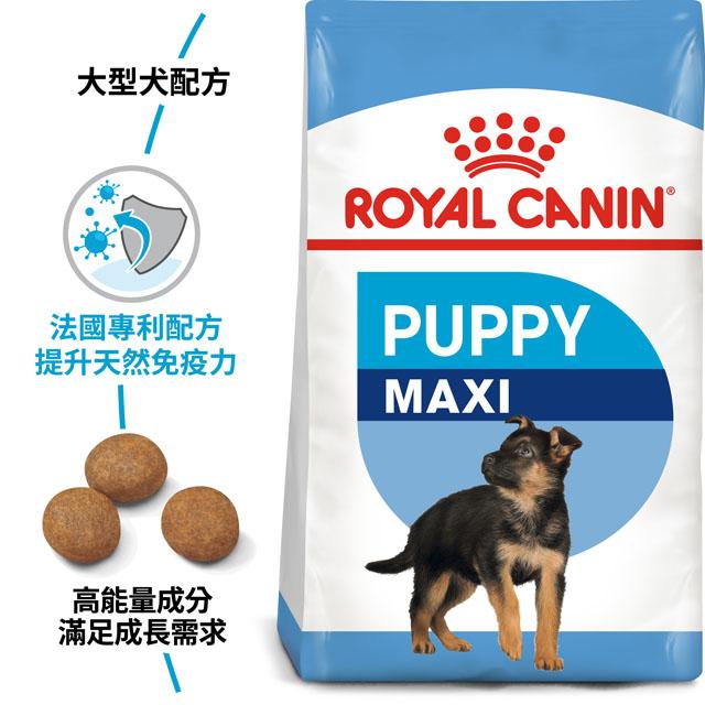 法國皇家》大型幼犬專用飼料 MXP 10kg(10公斤)