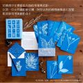 植物學家Anna Atkins復刻氰顯影盒卡,Anna Atkins, Princeton Architectural Press