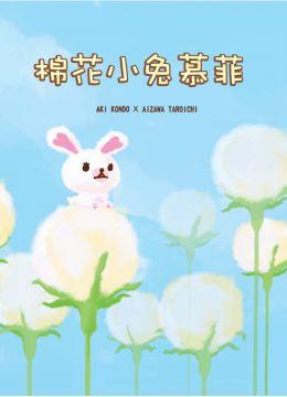 棉花小兔慕菲