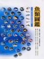 魚類圖鑑-台灣七百多種常見魚類圖鑑(精裝)
