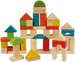 50pcs Building Blocks:環保益智積木組(外文書)