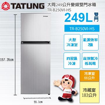 大同249公升變頻雙門冰箱TR-B250VI-HS