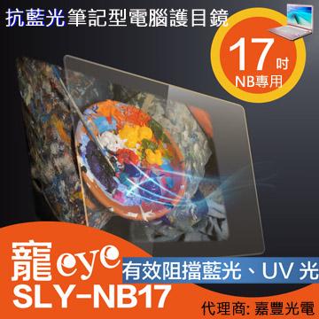 【寵eye】17吋 抗藍光筆電/螢幕護目鏡 (SLY-NB17)