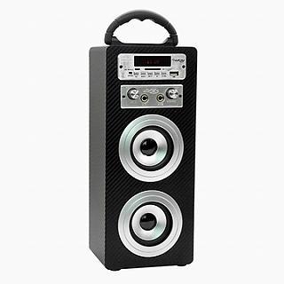 KINYO藍牙卡拉OK多功能音箱NS-81送百元耳機