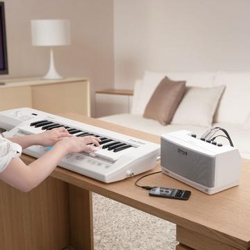 『ROLAND 樂蘭』CUBE Lite MONITOR 多用途監聽音箱 / 贈導線 公司貨