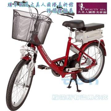勝一EV20S電動輔助自行車