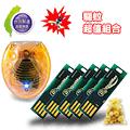 DigiMax UP-4R2 USB照明光波驅蚊燈片5入+O2MODA 光波驅鼠蚊器1入+台灣檜木球1袋